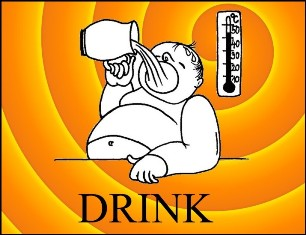 drink_s